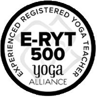 hdy-e-ryt500